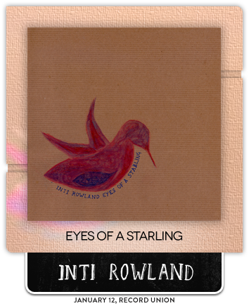 Eyes of a Starling by Inti Rowland