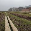 Compost op plantstroken GP2013_05.JPG