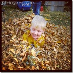 davin leaves