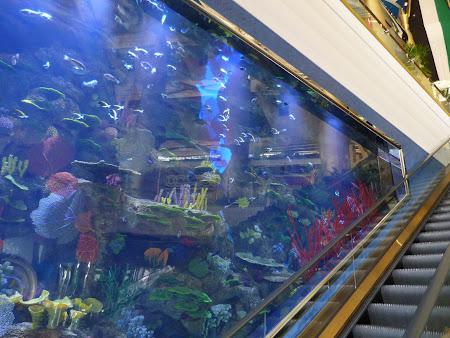 Obiective turistice Dubai: acvariu Burj al Arab