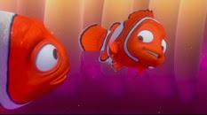 06 Nemo