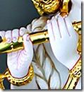 Krishna's hands