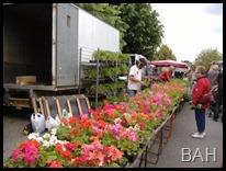 a PhotoJosselin Market DSCF3836