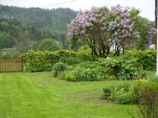 2011-05-28 Hagen på Møll (70)
