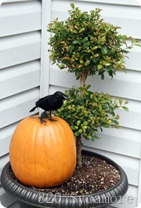 autumn porch 4