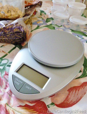 Jan 13 food scale 002