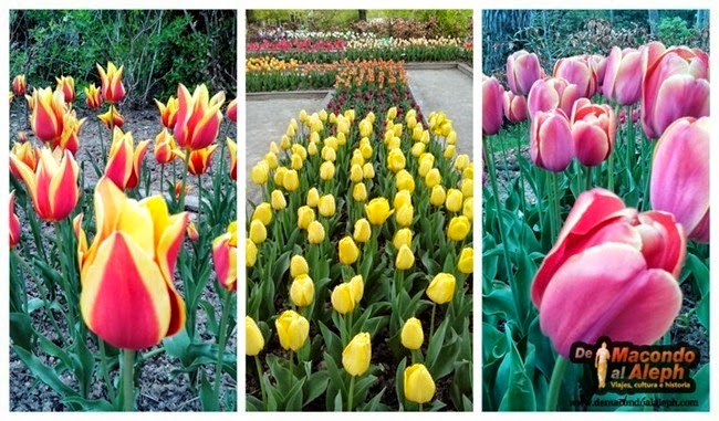 Parque Floral de Paris Bosque de Vincennes 16