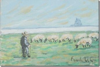 Moutons en baie du Mont St. Michel lo res