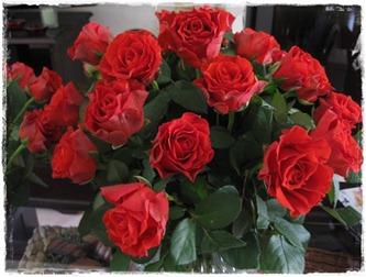 Roses Form Ingo