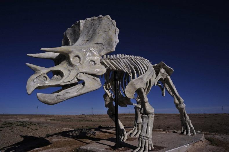 erenhot-dinosaurs-8