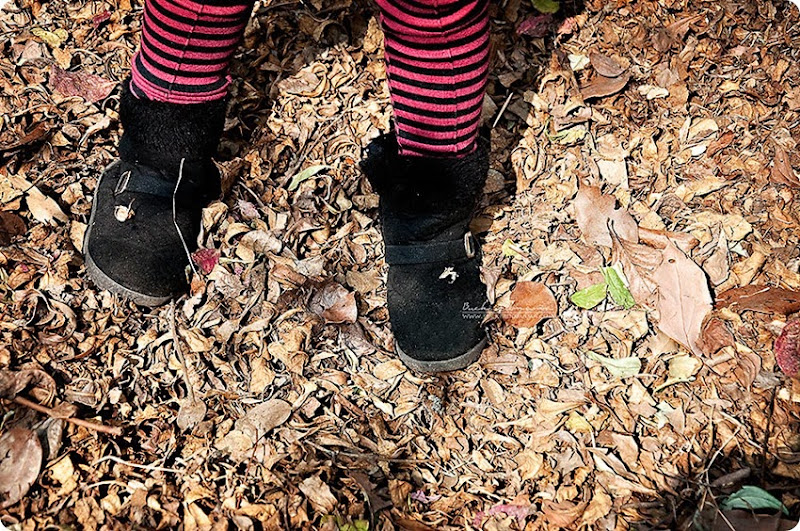 Stepping-on-leaves-(1)