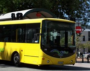 dunedin bus
