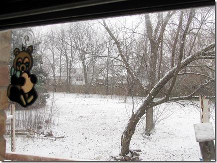 Snow01-22012a