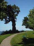 Path at Jeuist Retreat House in Oshkosh, WI