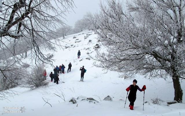 Macin-iarna-15_rw.jpg
