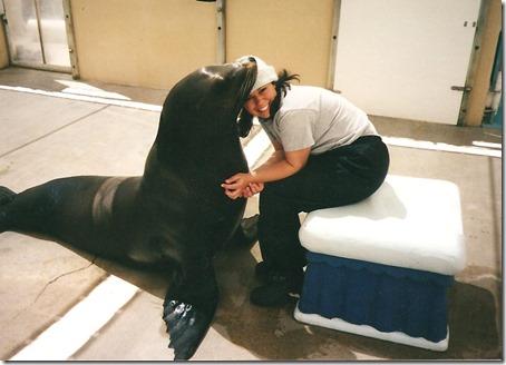 SeaWorld 012