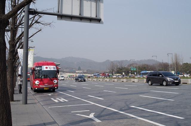 IMGP3135