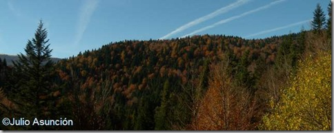 Panorámica de la reserva integral de Lizardoia - Selva de Irati