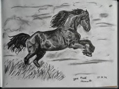 Horse002