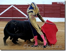 ©Dolores de Lara (56)