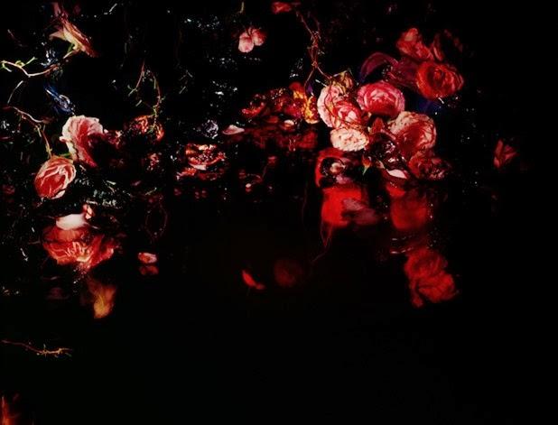margriet smulders 6