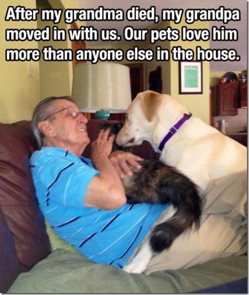 dog-mans-best-friend-26