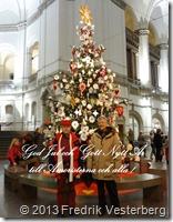DSC06122 (1) Julgran Fredrik Gunnar Nordiska God jul och gott nytt år till Amoristerna