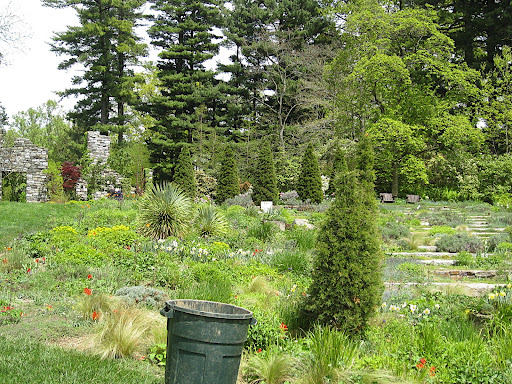 Looking up toward the ruin garden, this gentle slope is planted with more gravel loving and prairie plants.