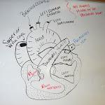 my_heart_drawing_board.jpg