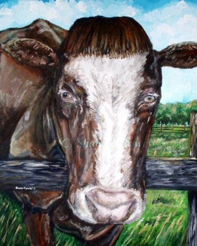 devine bovine shana rowe