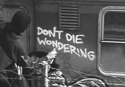 dont_die_wondering_quote