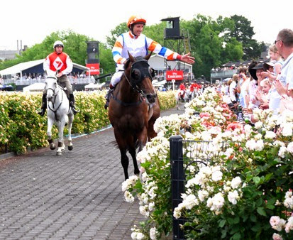 race 5_le roi 4