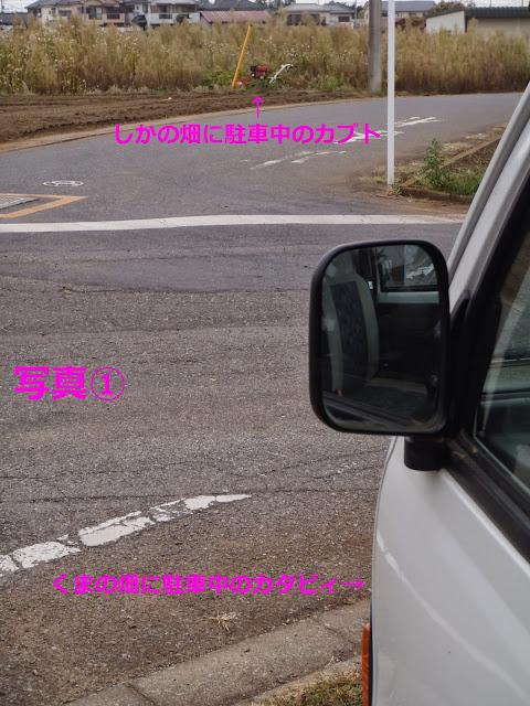 PA020012.JPG