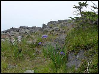 04k3  -  Hike - Trailhead to Green Point - High Ledge