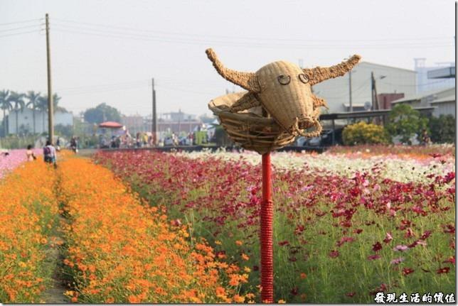 除了可以賞花之外,還有裝飾藝術可以欣賞-畚箕牛。
