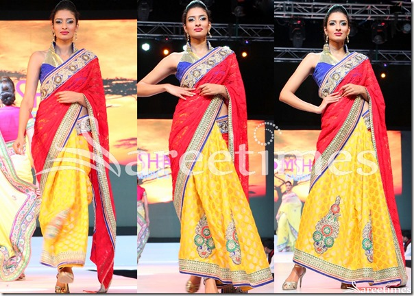 Red_Yellow_Half_and_Half_Saree