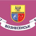Флаг г. Вознесенска