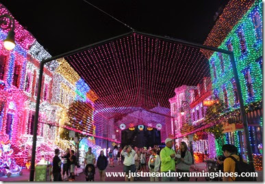 Osborne Family Spectacle of Dancing Lights (16)