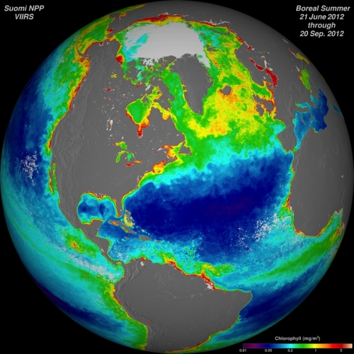 The Suomi NPP satellite, the newest polar-orbiting satellite in the U.S. fleet, can track ocean chlorophyll concentrations. The purple and blue colors represent lower chlorophyll concentrations. The oranges and reds represent higher chlorophyll concentrations. These differences in color indicate areas with lesser or greater phytoplankton in the ocean. Photo: Norman Kuring / NASA / Suomi NPP