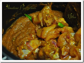 Kerala Chicken Curry 10