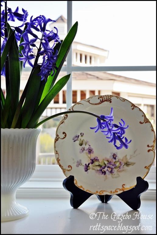 Liliacs, daffodills, cyclamen 038