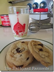 healthier chocolate chip cookies - The Backyard Farmwife