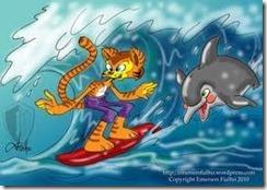 Boleiro surfista