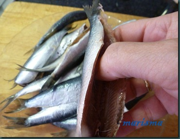 sardinas rebozadas2 copia