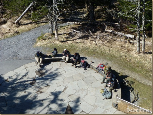 Clingmans dome_020