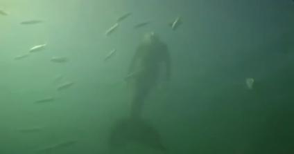 Βιντεοσκοπήθηκε νεο συμβαν με γοργονα 2013