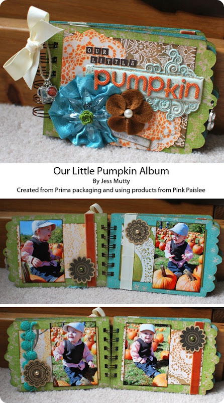Pumpkin Album Collage