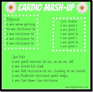 cardiomashup