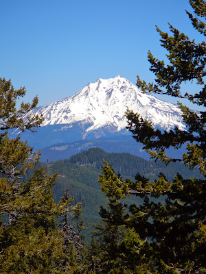 jefferson zoom.JPG