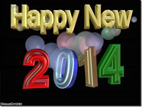 2014 año nuevo (9)